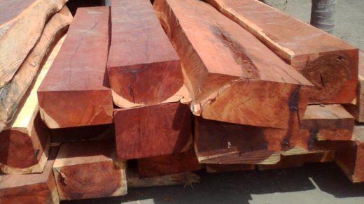 tiếng trung về các loại gỗ